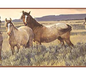 Brown Horses in Field Wallpaper Border Wallpaper Border
