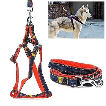 Jinhua perro arnés correa, Jinhua ajustable y resistente Denim ...