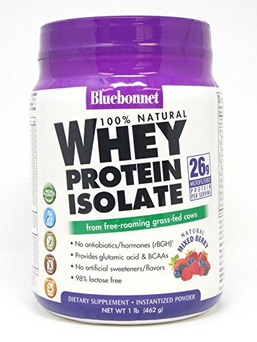 Bluebonnet Nutrition 100% Natural Whey Protein Isolate Powder, Mixed Berry Flavor, 1 Pound (Berry Whey)