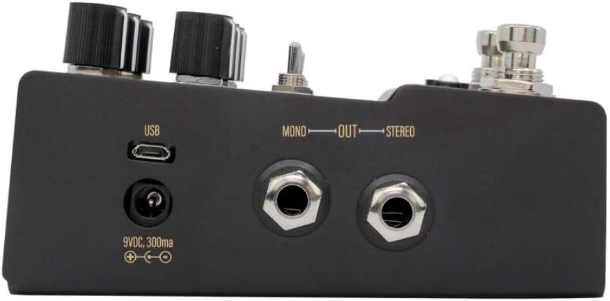 R1 High Fidelity Stereo Reverb:左側面