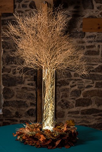 Amazon Bunch Of Dried Tumbleweed Sticks Dried Twigs For Autumn