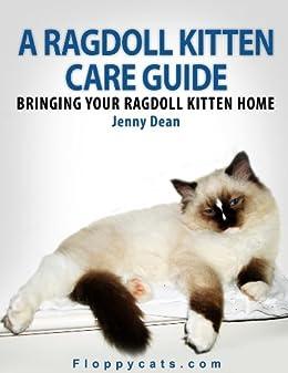 A Ragdoll Kitten Care Guide: Bringing Your Ragdoll Kitten Home by [Dean, Jenny]