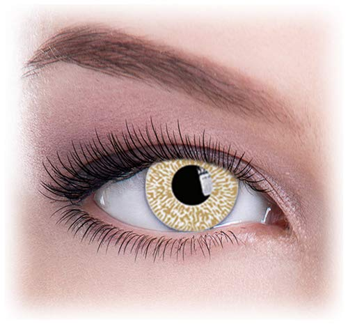 Women Multicolor Cute Charm and Attractive Eye Accessories Cosmetic Makeup Eye Shadow - Gold Glimmer with Contact Lens Case By Dress You Up TM]()
