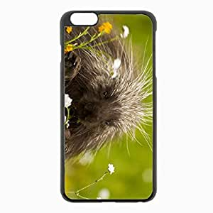 iPhone 6 Plus Black Hardshell Case 5.5inch - porcupine quills grass Desin Images Protector Back Cover