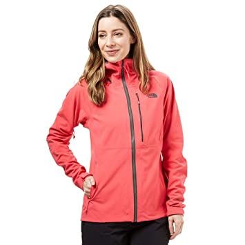 5ff916ab3 THE NORTH FACE Apex Flex GTX 2.0 Jacket Women pink 2018 winter ...