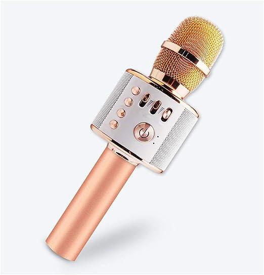 LIWEILA Karaoke micrófono inalámbrico Bluetooth, Altavoz ...