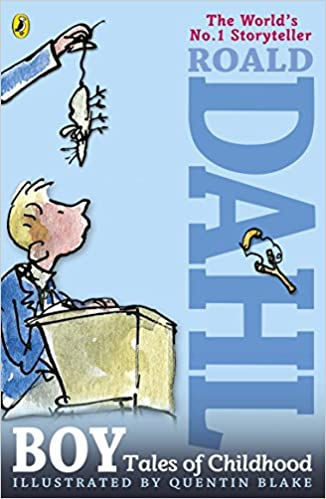Image result for Boy by roald dahl