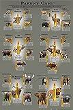 Parent Case - Cartridge Poster (Cartridge Comparison Guide)