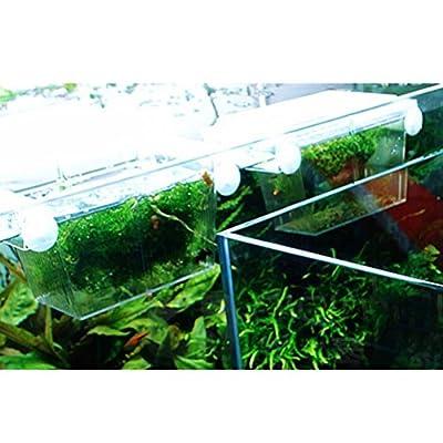 VORCOOL Fish breeding box Aquarium Self-floating Fish Breeding Isolation Box Breeder Hatchery Incubator (Transparent) from VORCOOL