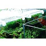 VORCOOL Fish breeding box Aquarium Self-floating Fish Breeding Isolation Box Breeder Hatchery Incubator (Transparent)