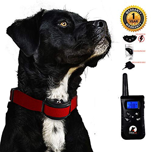 Bestselling Dog Sonic Bark Deterrents