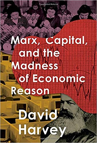 Image result for Marx, Capital, and the Madness of Economic Reason