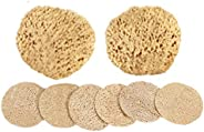 Facial Cleanse and Exfoliate Kit by Spa Destinations - Kit Includes Two (2) Natural Facial Sea Wool Sponges 2&