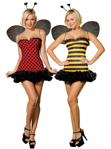 Ladybug Costume Women (Dreamgirl Women's Reversible Bumble Bee/Lady Bug Costume, Multi, Large)