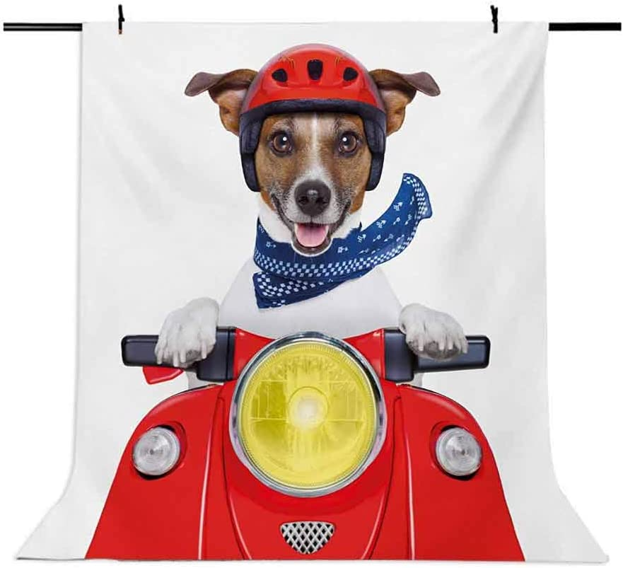 Puppy with Helmet Riding Motorbike Humor Jack Russell Courier Italy Pet Graphic Background for Child Baby Shower Photo Vinyl Studio Prop Photobooth Photoshoot Dog Driver 10x12 FT Photography Backdrop