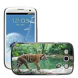 Super Stella Slim PC Hard Case Cover Skin Armor Shell Protection // M00144380 Tiger Wildlife Animal Wild Safari // Samsung Galaxy S3 S III SIII i9300