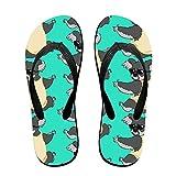 Sunglasses Koala Flip Flops Non-slip Sandals Multicolored Shower Slippers For Men Women