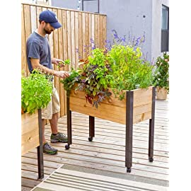 "Self Watering Cedar Raised Garden Bed, Standing Garden 9 BENEFITS- Our Standing Garden lets you garden in complete comfort - no bending or stooping. Grow salad greens, herbs, even tomatoes and peppers on a deck, patio, or right on your doorstep. Self watering elevated garden is easy to plant, tend and harvest MATERIALS- Rot-resistant cedar bed on powder-coated aluminum legs MEASUREMENTS- 39-1/2"" L x 16-1/2"" W x 32"" H overall, 10-1/2"" deep planting area"