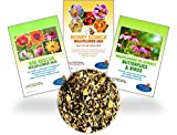 shade perennials zone 7 Wildflower Seeds - 8 Gardening eBooks - 87,000 Bulk Annual and Perennial Seed - Open-Pollinated, Non-GMO, No Fillers, Wild Flower Seeds For Fall Planting, Bees, Humming Birds, Butterflies, Pollinators