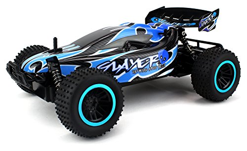 Skull Slayer Remote Control RC Buggy Car 2.4 GHz PRO System 1:12 Scale Size RTR w/ Working Suspension, Spring Shock Absorbers (Colors May Vary)