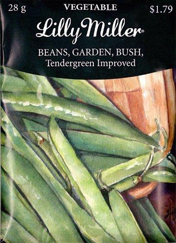 The Dirty Gardener Garden Tendergreen Improved Bush Beans