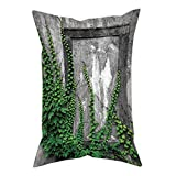 iPrint Polyester Throw Pillow Cushion Cover,Mystic House Decor,Ivy on Wall with Aged Antique Empty Picture Frame as Window Creative Art,Green Charcoal,Decorative Square Accent Pillow Case