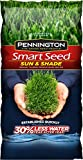 Pennington Smart Seed Sun and Shade Grass Seed Mix - 7 LB