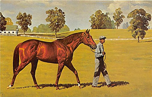 (Swaps by JN Slick, Chestnut Colt 1952 Saratoga Springs, New York, NY, USA Old Vintage Horse Racing Postcard Post Card)