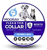 m00ray Nike Flea and Tick Collar for Dogs and Cats with Natural Ingredients - Adjustable & Waterproof pet flea Collar for 8 Month Protection (grey11)