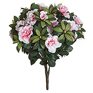 17 Inch Azalea Bush Colors Signature Foliage White, Cream 23