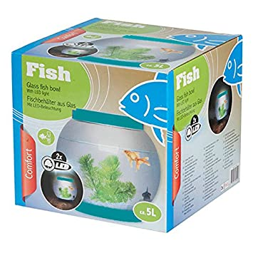 5 litre Glass Fish Bowl with LEDs by Edco