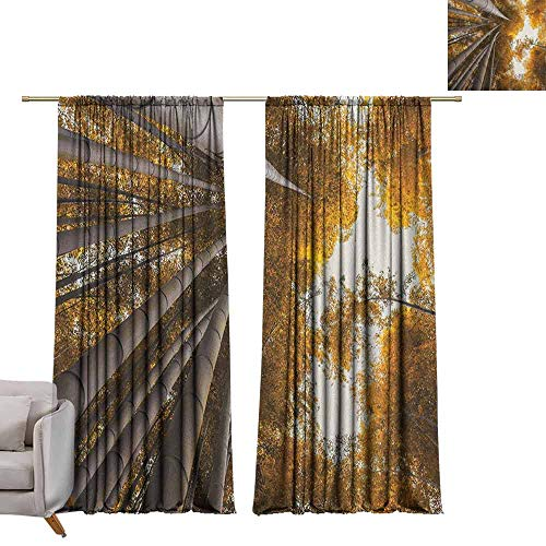 Curtain Panels Bamboo,Bottom to Top Bamboo Grove Fall Landscape Potential for Improvement Symbol Print, Yellow Brown W84 x L108 Grommet Curtain for Bedroom