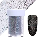 1 Sets Holographic Series Nail Art Sticker Flower Plaid Line Silver Holo Starry Water Transfer Nails Wrap Paint Tattoos Stamping Plates Templates Tools Tips Kits Brainy Popular Decals Kit, Type-15
