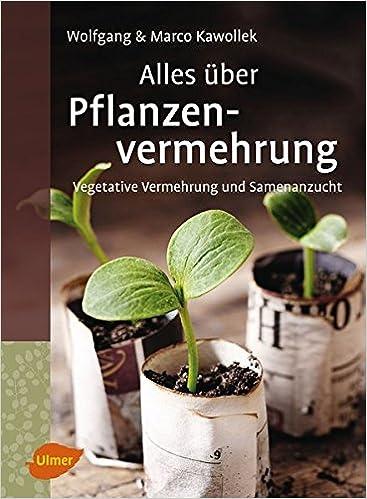 Alles Uber Pflanzenvermehrung Vegetative Vermehrung Und