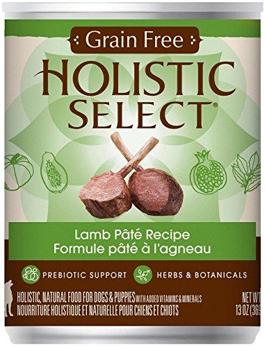 Holistic Select Natural Grain Free Wet Dog Food - Lamb Pate - 13 oz - 12 ct