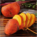 Package of 600 Seeds, Golden Detroit Beet (Beta vulgaris) Non-GMO Seeds By Seed Needs