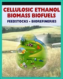 Enzyme Kinetics: A Biofuels Case Study - YouTube