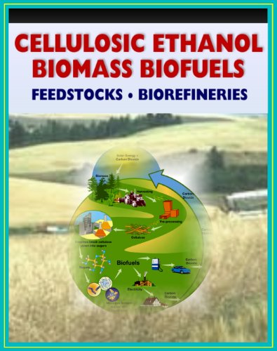 21st Century Cellulosic Ethanol, Biomass, and Biofuels - Wood Chips, Stalks, Switchgrass, Plant Products, Feedstocks, Cellulose Conversion Processes, Research Plans