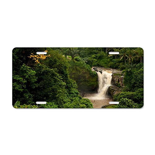 Blingreddiamond Bali Indonesia Waterfall Forest Palm Trees Rock Customized Auto Car Tag Sign 4 Holes Aluminum Metal License Plate Cover 12 x 6 -