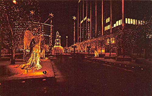 Christmas Trees Post Card Constitution Plaza Holiday Lighting Hartford, Connecticut, USA Unused