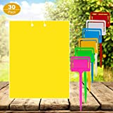 Features:       A.Garden, farm,greenhouse and orchard's savior.       B.Perfect for flying plant insect like gnats, flies,aphids,whiteflies,leafminers,aphids,fungus gnats, thrips, midges etc.       Package Includes: 30 pack 6x8inches y...