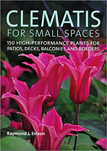 Clematis For Small Spaces 150 High Performance Plants For Patios