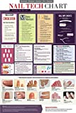 Educational Nail Tech Laminated Poster 18'' x 27'' Inch, Great For Professional Nail Techs, Students, Or Teachers/Educators, Covers Manicure's, Pedicure's, Acrylics, Gel & Anatomy & More