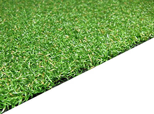 4 Feet x 15 Feet Professional Synthetic Turf Grass Nylon Practice Putting Green by PREMIUM PRO TURF (Image #1)