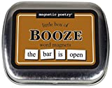 word fridge magnets - Magnetic Poetry - Little Box of Booze Kit - Words for Refrigerator - Write Poems and Letters on the Fridge - Made in the USA