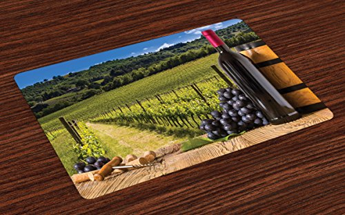 (Ambesonne Winery Place Mats Set of 4, Red Wine Bottles with Grapes on Timber Board Tuscany Italian Terrace Scenery, Washable Fabric Placemats for Dining Room Kitchen Table Decor, Brown Green)