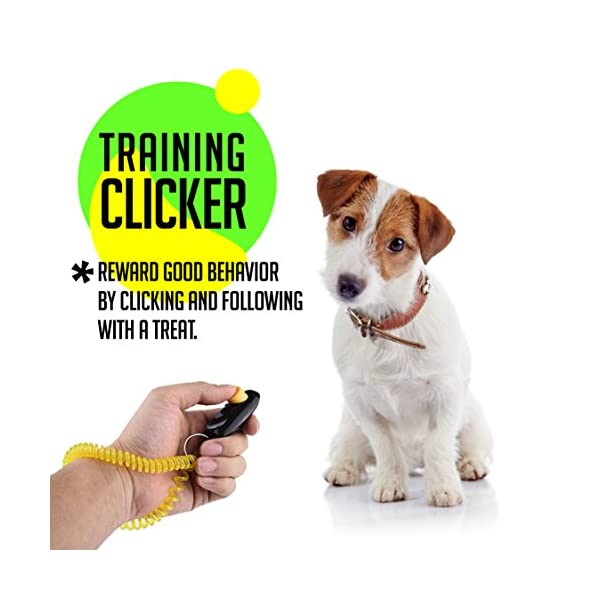AMZpets Puppy Training Set 4 Pcs - Dog Clicker, Potty Doorbells for House Train, Treat Pouch W/Bag Dispenser & Bark Control Ultrasonic Whistle Essential Gift for New Pet Owners 3