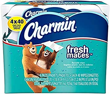 Charmin Freshmates Flushable Wipes Triple Pack Refills, 160 Count