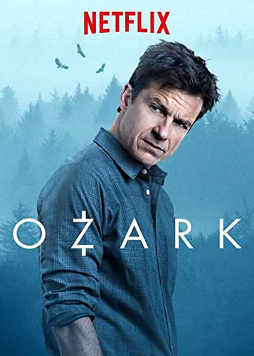Ozark Season 01 Complete Hindi Dual Audio Episodes HDRip 720p 480p