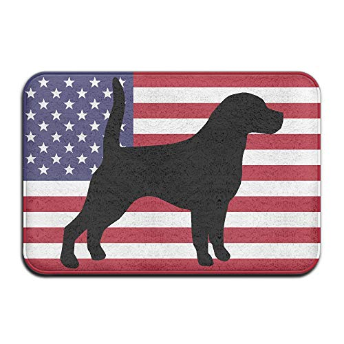 Beagle USA Flag Indoor Outdoor Entrance Rug Non Slip Car Floor Mats Doormat Rugs for Home by HONMAt-Non (Image #1)